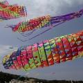 festival_aquiloni (2)