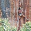 rock_climbing (72)